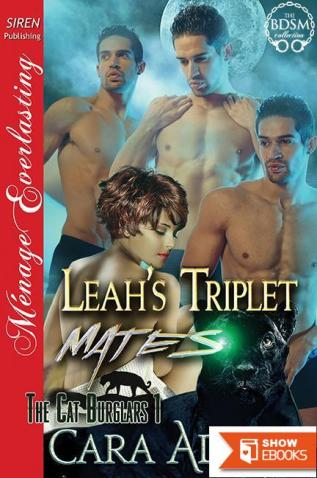 Leah's Triplet Mates [The Cat Burglars 1] (Siren Publishing Menage Everlasting)